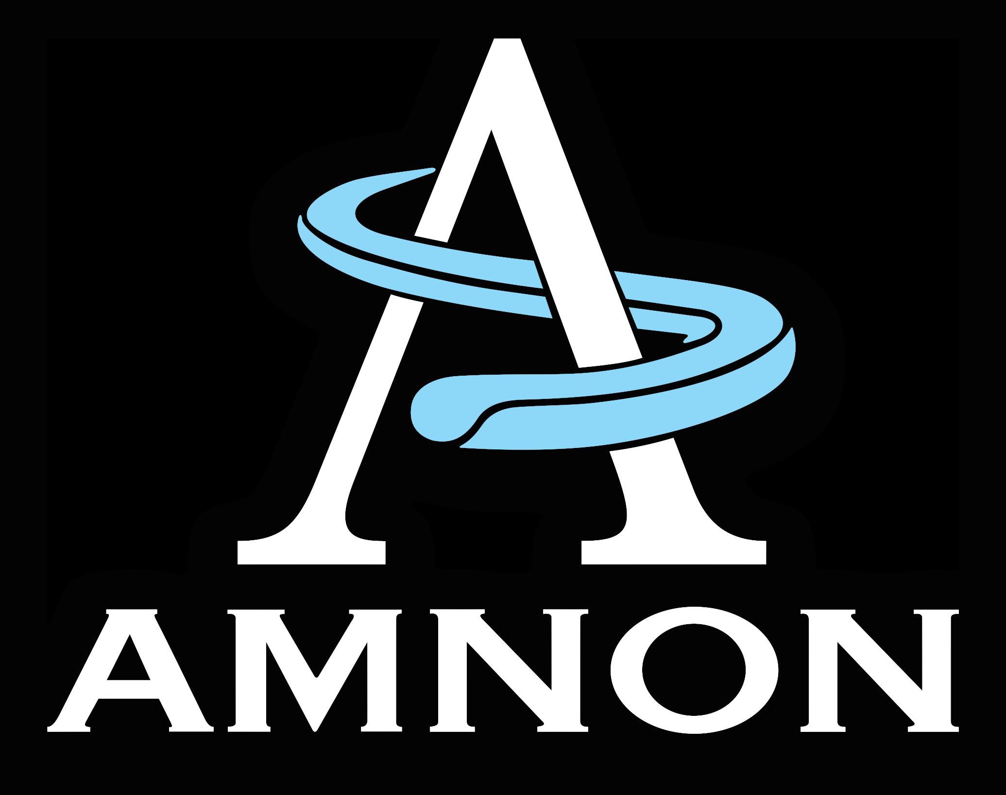 Amnon Polska